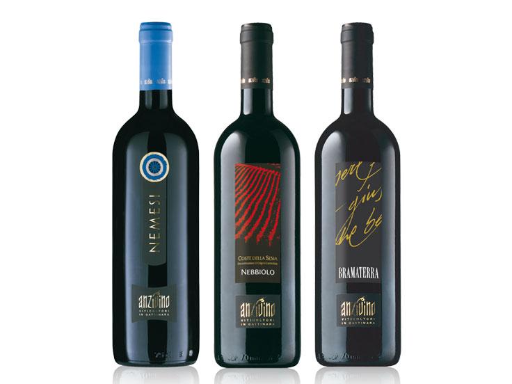 Linea Vini Piemonte
